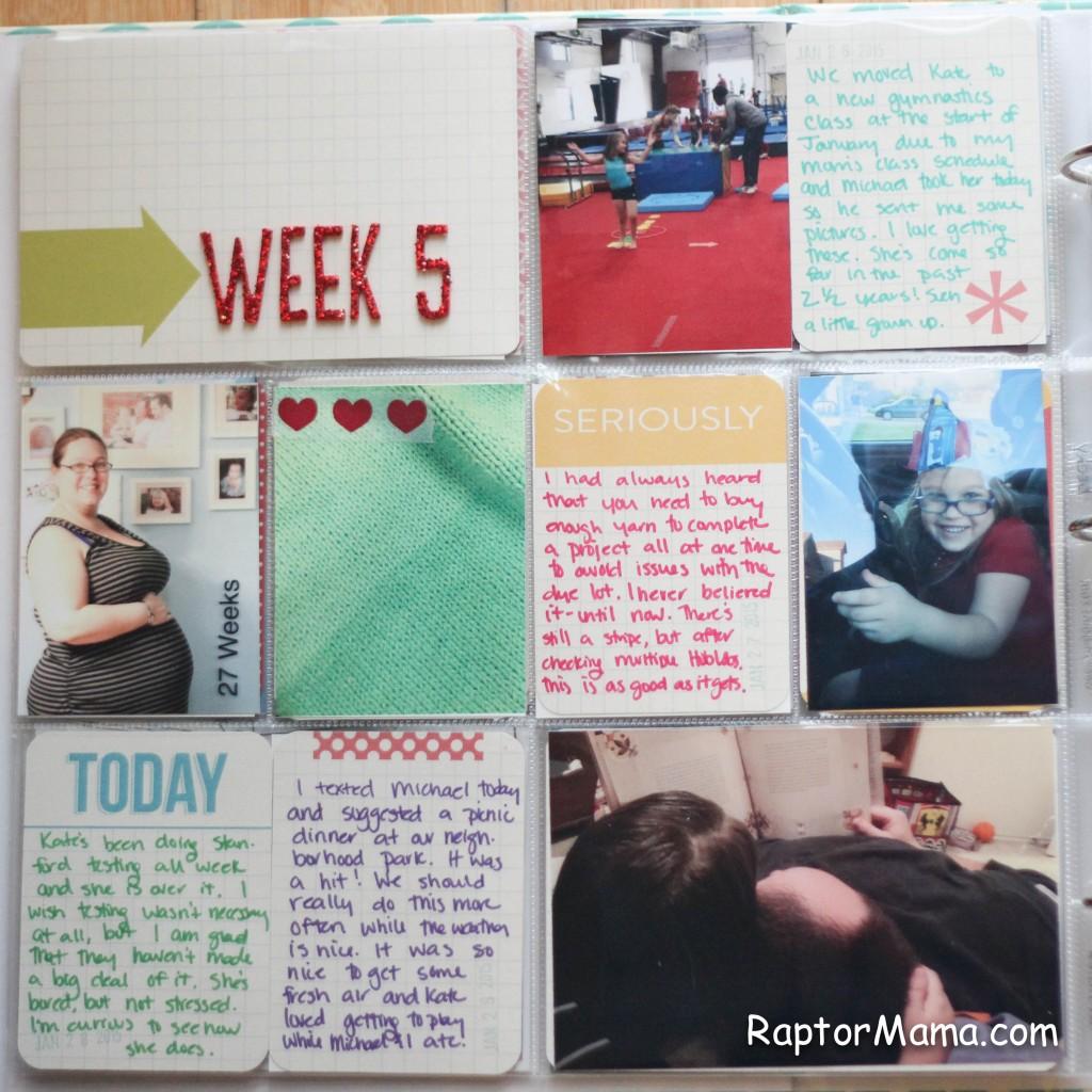 week 5 2015-2